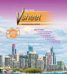 VSheet Newsletter 4