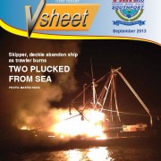 VSheet Newsletter 3