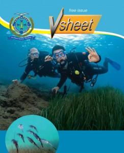VSheet Newsletter